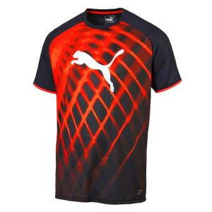 Koszulka treningowa Puma IT EvoTRG Graphic Tee M 65460445