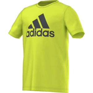 Koszulka adidas Essentials Logo Tee Junior S23188